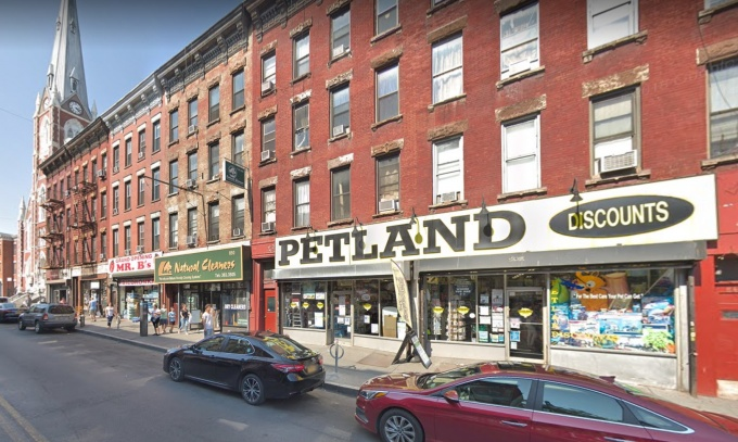 Petland Discounts Closing New York Stores, Including Brooklyn
